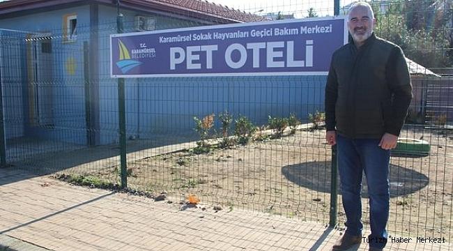 Sokak hayvanlarına deniz manzaralı otel