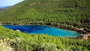 Bodrum'un dünyaca ünlü koyu halk plajı oluyor