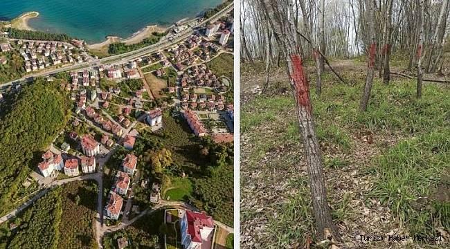 Ağaçların kesilerek otel, kule ve restoran yapılmasına tepki!