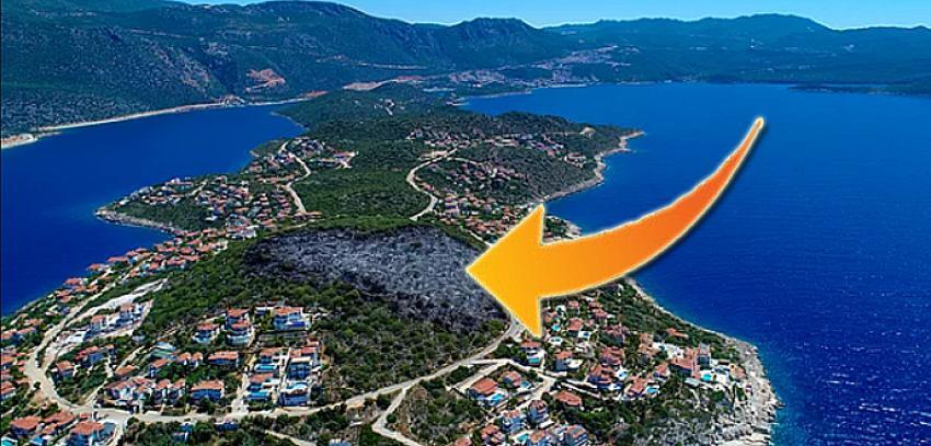 Mayıs ayında yanmış, ağaçlandırılacak denilmişti! Ekolojik turizm için imara açıldı